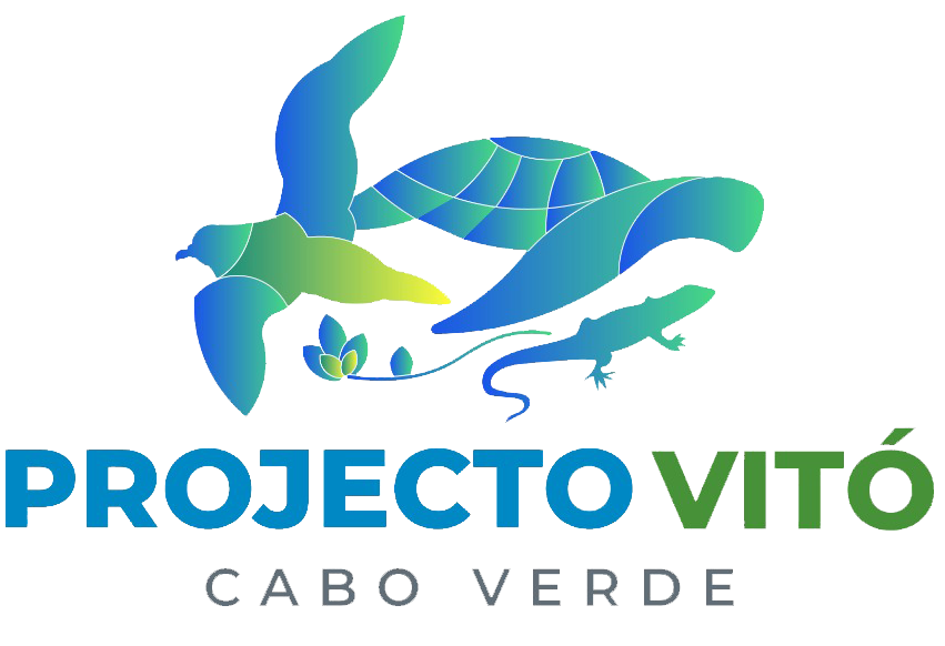 Projecto Vitó